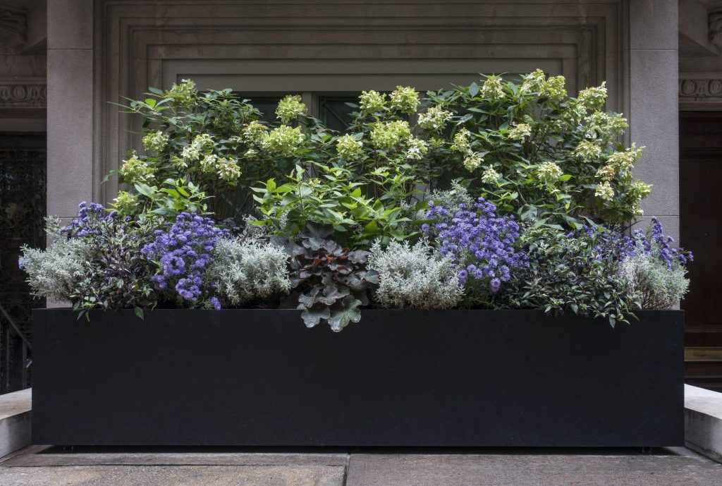 Planter Box with Purple, White, and Green Flowers